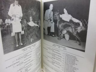 1975 Official National Pictorial of the Irish Setter Club of America.