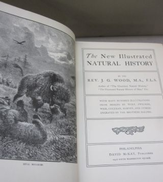 The New Illustrated Natural History.
