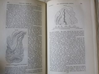 A Manual of Elementary Geology 5th edition.