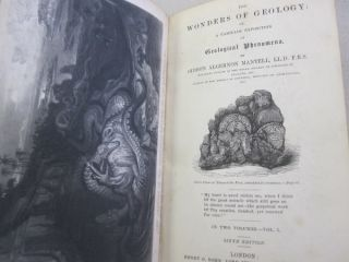 The Wonders of Geology; Or, A Familiar Exposition of Geological Phenomena